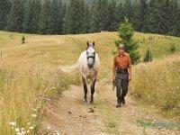 Camino en Rumania