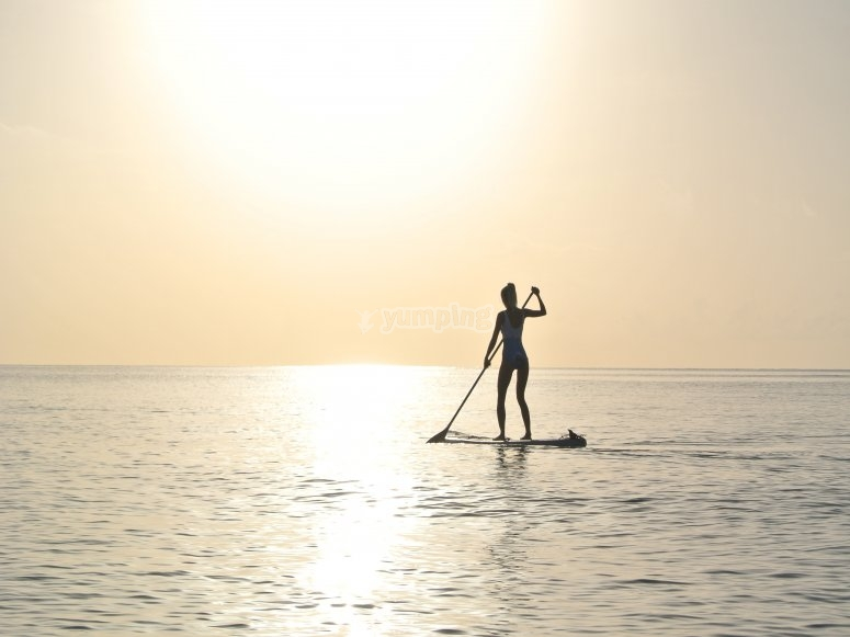 Stand up paddle surfing in pairs