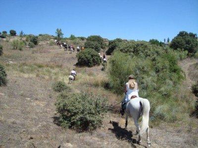 Caballos y Veredas Sierra Norte Team Building