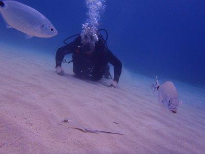 Acqua Life Dive Center
