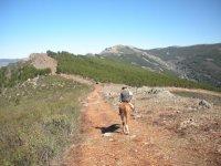 Montando岩石由塞拉尼亚之间小跑