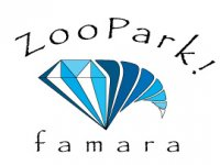 Zoopark Famara Team Building