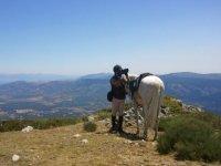 Ruta a caballo para tomar fotos
