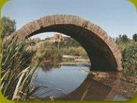 Puente romano en Benavente