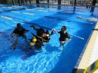 Course in the pool