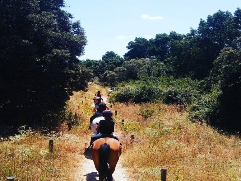 Salida con los caballos por Villafranca