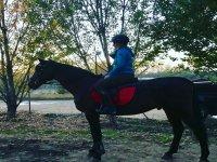 Entre la arboleda con el caballo