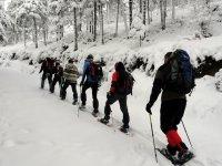 路线的雪鞋步道