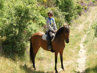 Horses Gredos Club Deportivo