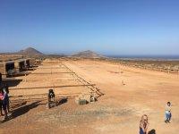 Finca ecuestre en Lanzarote