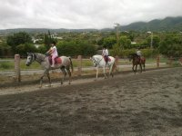 Students of horse riding in the Canary Islands