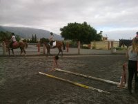 Equestrian class on the track