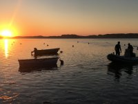 Giro in barca sull'estuario del Mogro 1 ora