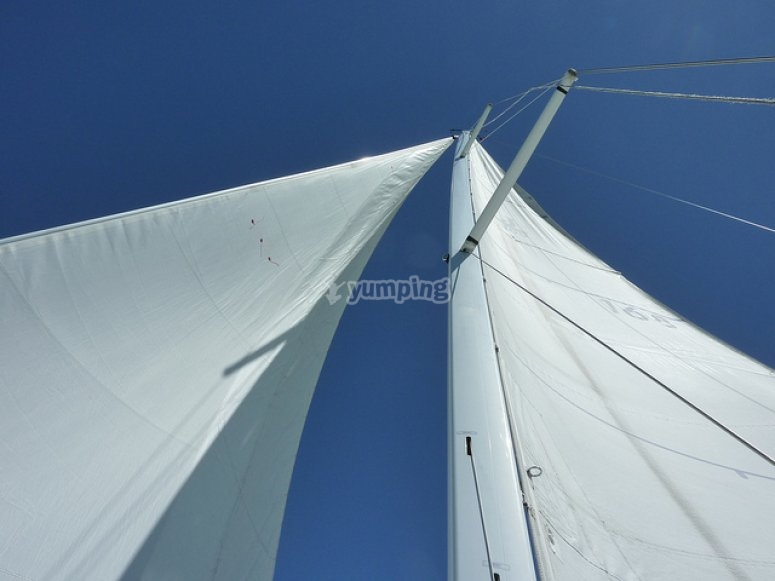 Sails on the boat