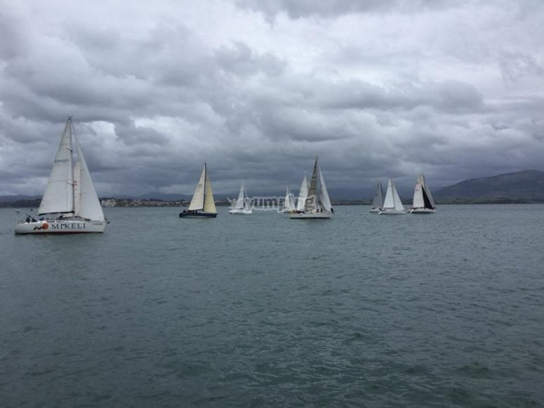 Regatta on a cloudy day