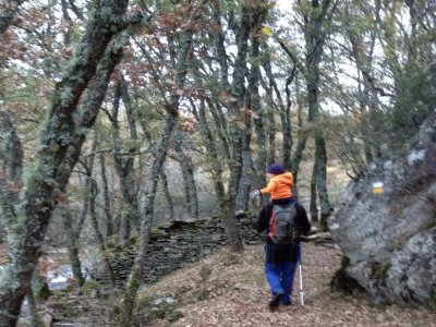 Ruta de trekking nivel 1 en Sierra de Guadarrama