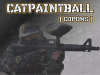 Catpaintball Team Building
