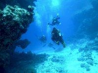 在热带海岸潜水洗礼3小时