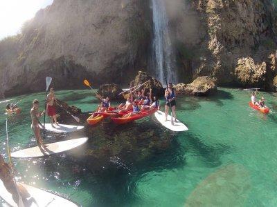 哥斯达黎加热带和食物中的桨冲浪路线