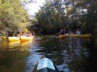 Ruta canoa por chiringuitos de Ribera Santibañesa