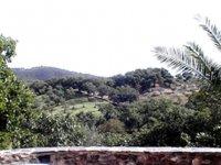 Relajantes vistas