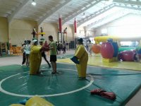Sumo bout