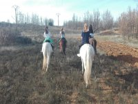 On the horses in the mountains