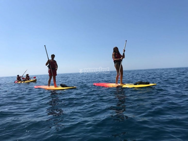 En route with the paddle surf boards