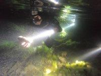 夜间用手电在海底下