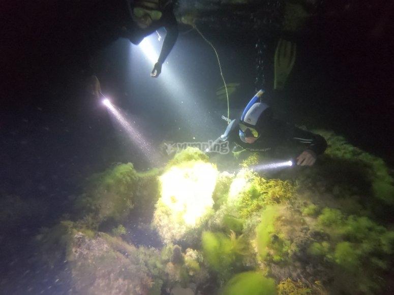 在坎塔布里亚夜间浮潜