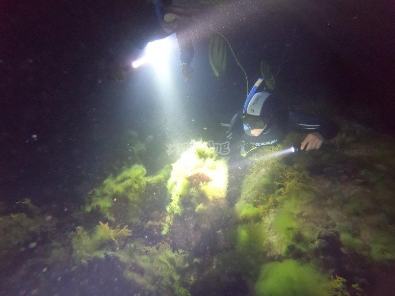 晚上在Ris海滩潜水