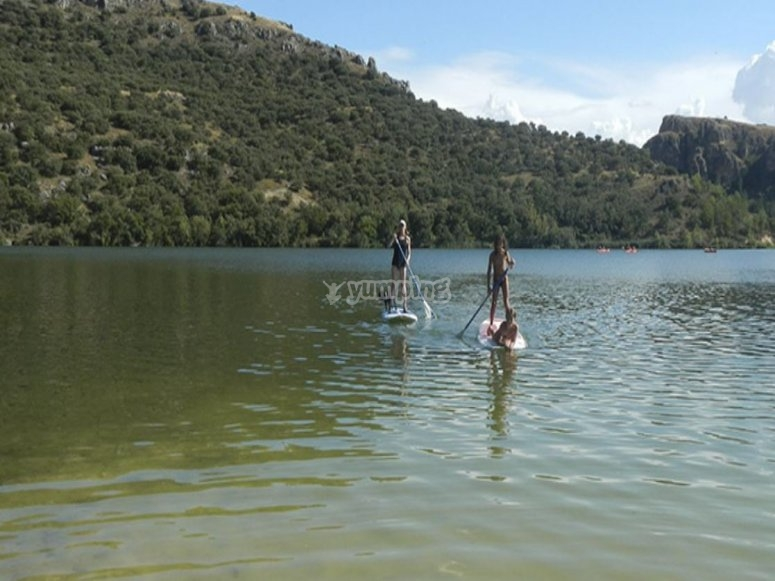 Entire family practicing paddle surf