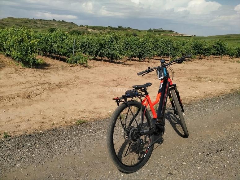Ruta de bicicleta eléctrica por La Rioja