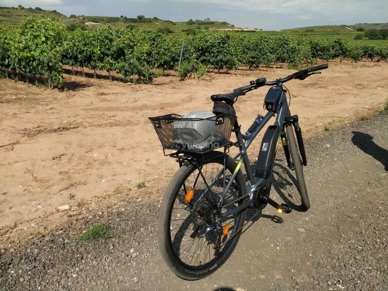 Alquiler de e-btt en La Rioja