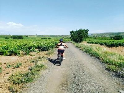 Alquiler bicicleta eléctrica en La Rioja 1 día