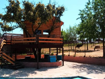 Granja Escuela Giraluna Campamentos Urbanos