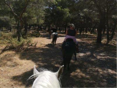 Paseo a caballo al atardecer con cena Torremolinos