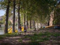 穿越树林的路线