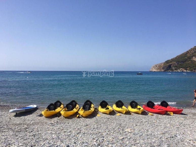 热带海岸的皮划艇团队