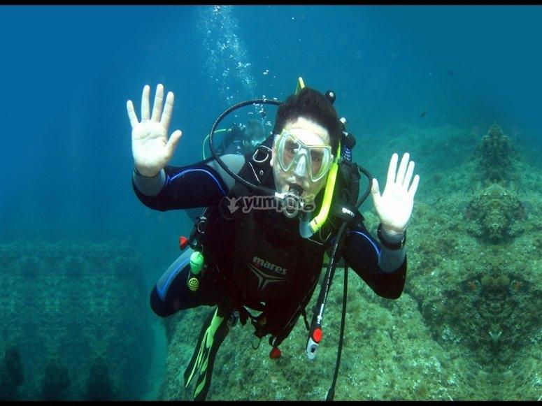 享受加波角的海洋生物