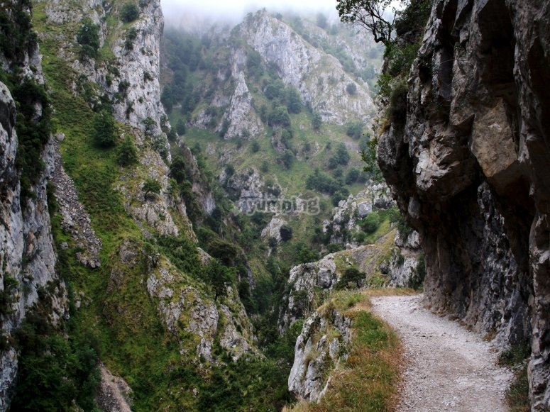 Spectacular gorge on the Cares Route