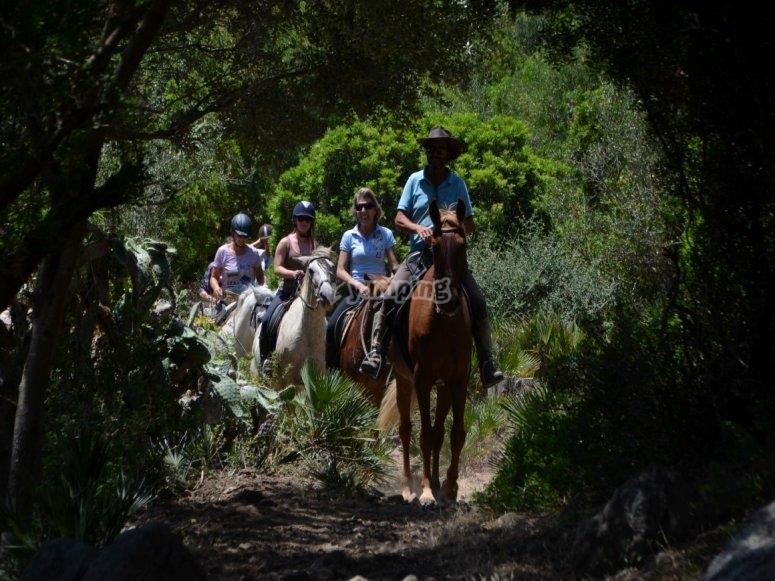 在加的斯森林骑马