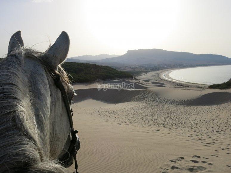 海峡的骑马景色