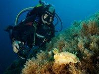 在伊比沙岛潜水装备2小时