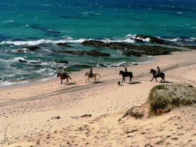Horseback route and Accommodation Bolonia 1 week