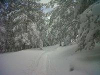 Paseos con raquetas de nieve por la sierra de Urbión