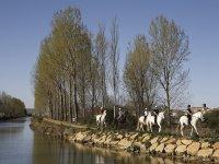 Ruta a caballo por el Canal de Castilla