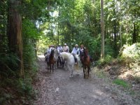 Ruta a caballo del Camino de Santiago