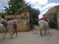 Paseos en pony
