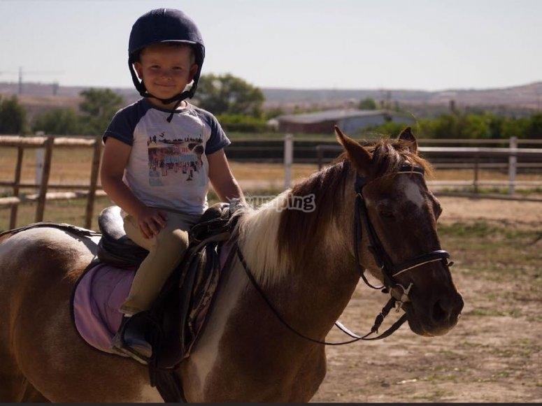 Sobre el caballo en la pista de arena
